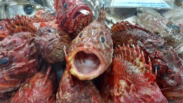 サンティアゴ食品市場の魚売り場