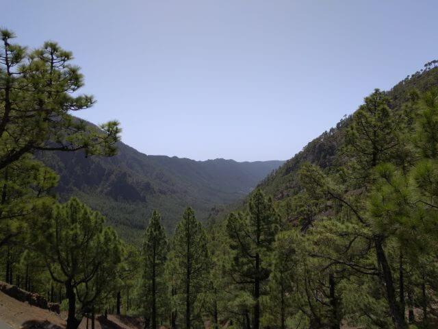ラ・パルマ島の国立公園の景色