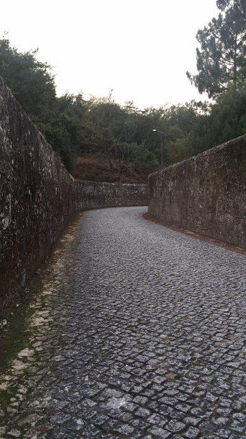 ポルトガルの石畳の道