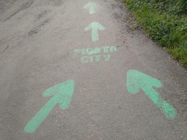 ピコタ村方向を指す緑の矢印